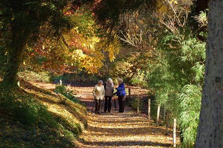 Benmore Botanic