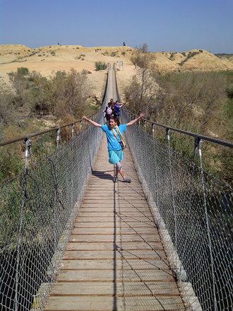 על הגשר