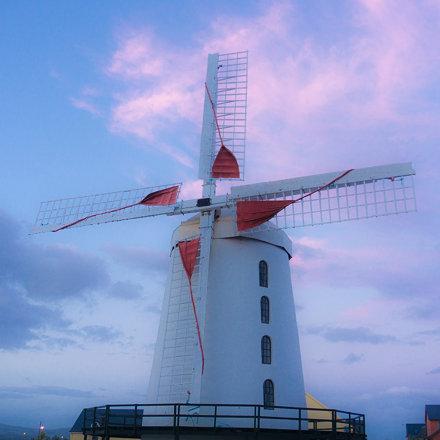Blennerville Windmill--05836 20170726