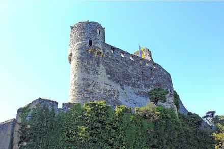 Senftenberg. Burgruine