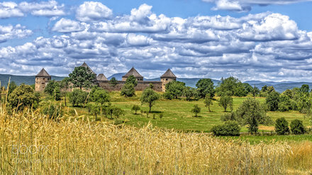 Bzovik Castle