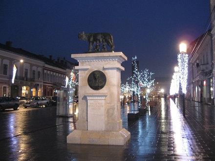 Lupa capitolina, Cluj