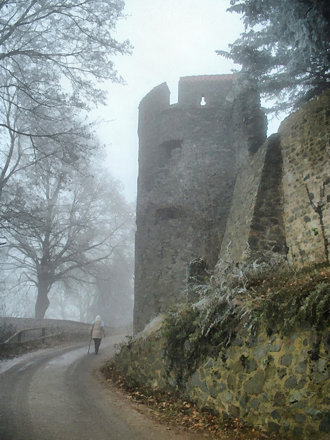 Frankenstein in Fog