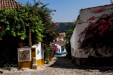 The streets of Obidos #3