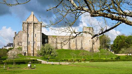 Ruines du Chateau du Xè siècle