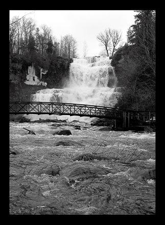 Chittenango Falls II