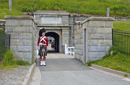Sentry Duty at The Citadel