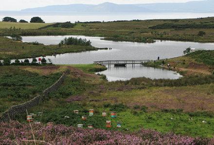 Clyde Muirshiel Regional Park