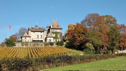 Chateau du Crest