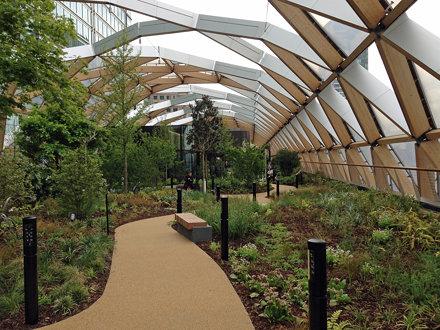 Crossrail Place Roof Garden (E)