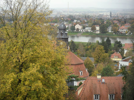 Aussicht auf die Elbe