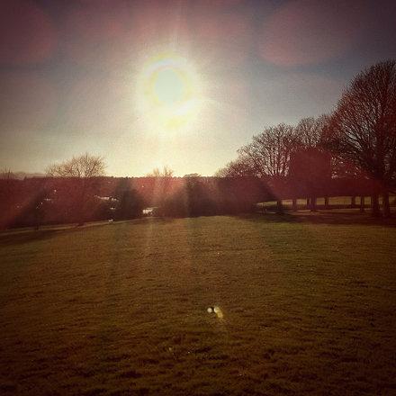 Sun (99/365)