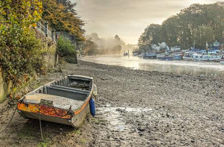 Morning Mist - Twickenham