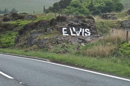 The Elvis Rock