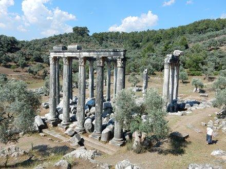 Temple of Zeus, 6th c. BC