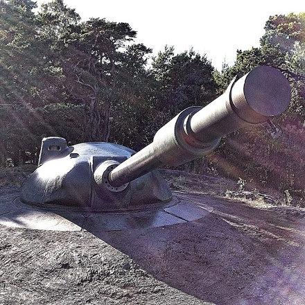 #war #sweden #forest #weapon