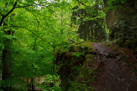 Harz, Germany, Summer Holiday 2013