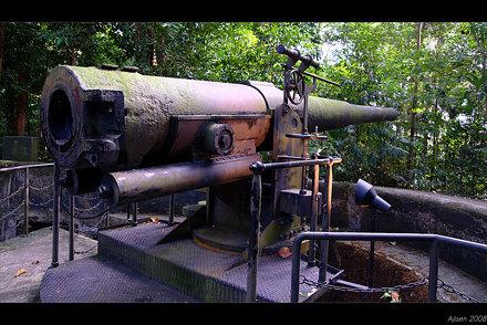 World War II Gun