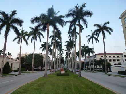 Florida '14