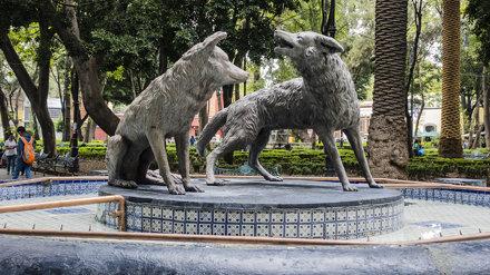 2019-08-26-162139_Mexiko-Stadt_Coyoacán, Fuente de los Coyotes
