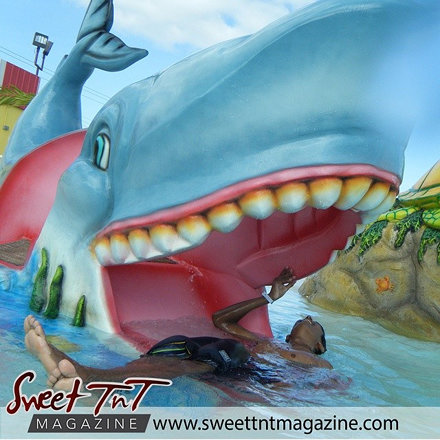Water parks for August. NEW ISSUE: AUGUST 2014. Visit sweettntmagazine.com for magazines, forums, an