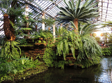 It's Still Summer at the Garfield Park Conservatory