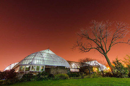 Garfield Park Conservatory under glowing night skies