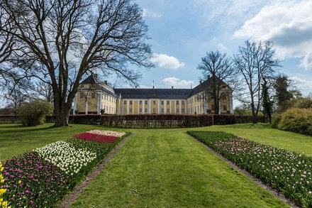 Gavno's Tulip Festival