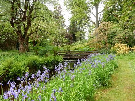 Stream, Geilston Gardens