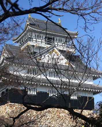 Gifu Castle (60)