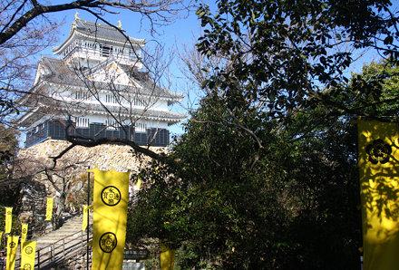 Gifu Castle (61)