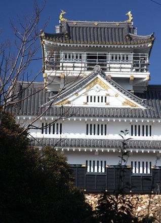 Gifu Castle (62)
