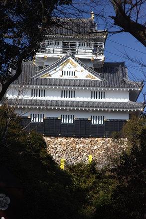 Gifu Castle (63)