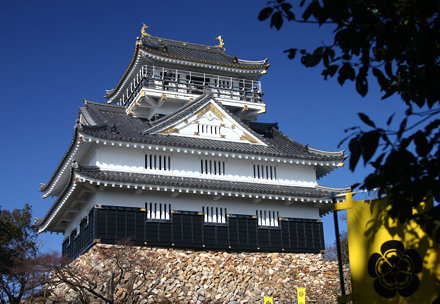 Gifu Castle (57)