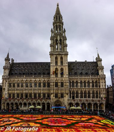 Brussels Flower Carpet 2014