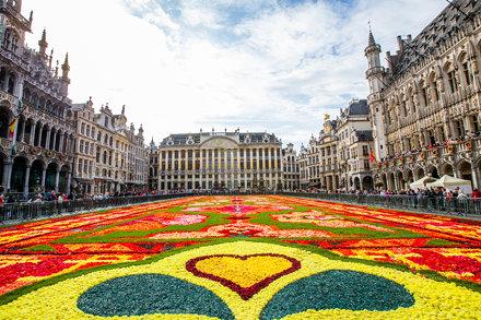Belgique - Bruxelles - Grand-Place - Tapis de Fleurs 2014