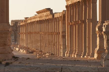 Palmyra XII: The Great Collonade