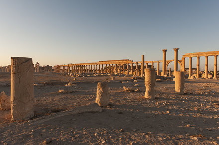 Palmyra I: The Great Colonnade