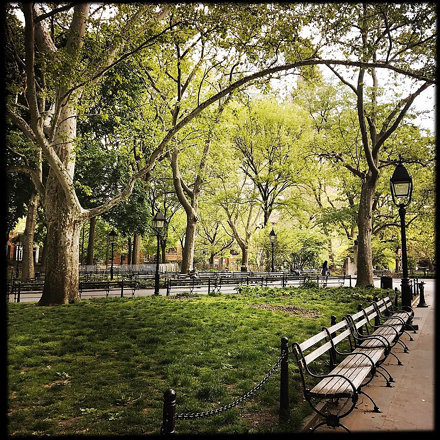 On my way through Washington Square Park - I love our city