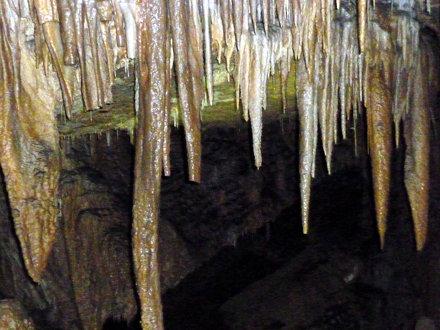 19_025 Tasmania Cave