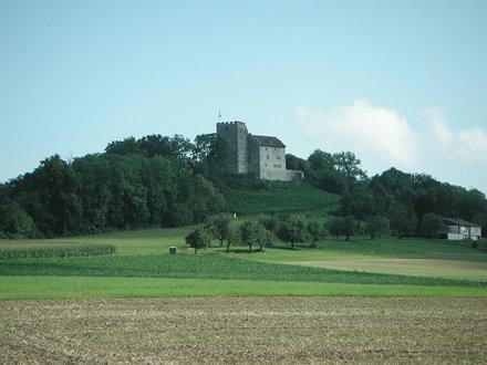 Schloss Habsburg(1)