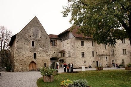 Schloss Hallwyl - Seengen
