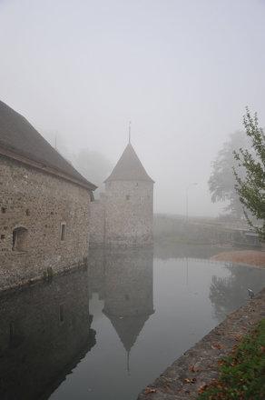 Castle of Hallwyl in the mist