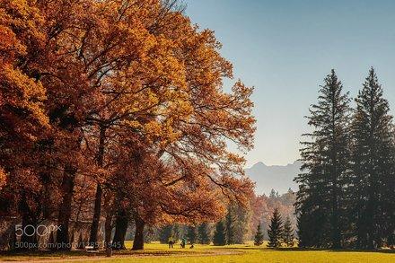 Fantastic Salzburg Autumn 2015