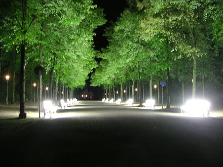 Light Seats