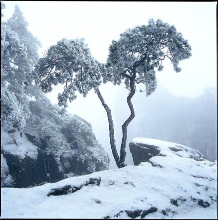 China/HuangShan/水墨黄山