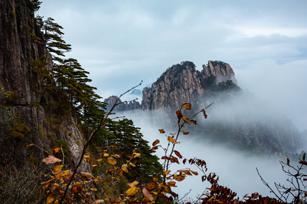 Mt. Huangshan National Park