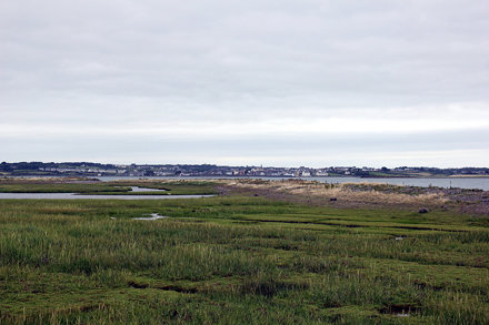 Kilrush as viewed from Scattery Island