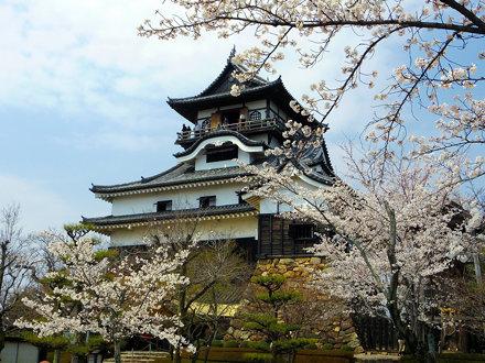 犬山城天守閣 (Inuyama Castle)