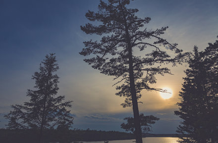 Peace Pipe Vista - Lake Itasca Sunset, Minnesota